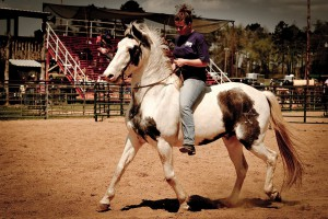 rodeo-2011-01